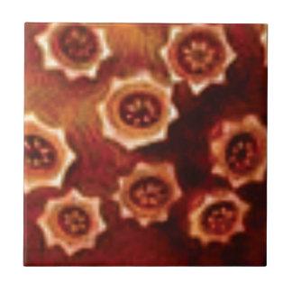conjunto de flor vermelho