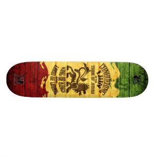 conquistando o skateboard_pro do leão (3) skates personalizados