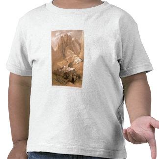 Convento de St. Catherine com montagem Horeb, Febr T-shirts