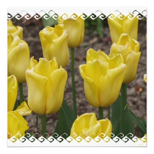 Convite amarelo das flores da flor da tulipa