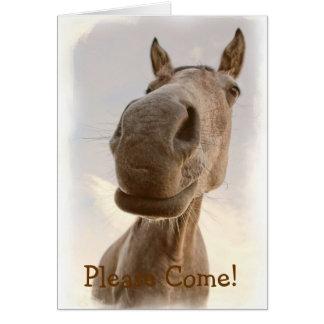 Convite amigável engraçado do cavalo