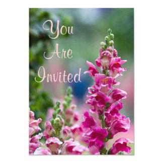 Convite cor-de-rosa de florescência do Foxglove