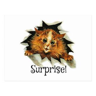 Convite do cartão do partido de surpresa, gato de