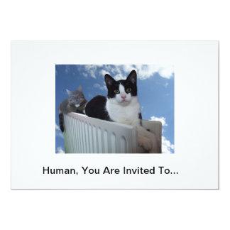 Convite do gato do monotrilho convite 12.7 x 17.78cm