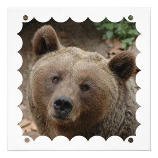Convite do urso de Brown