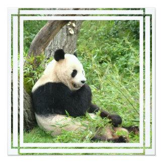 Convite do urso de panda gigante