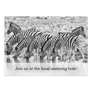 Convite engraçado do aniversário da zebra africana