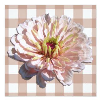 Convite - o Zinnia cor-de-rosa o mais pálido