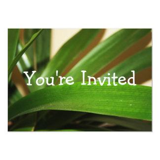 Convite tropical da folha