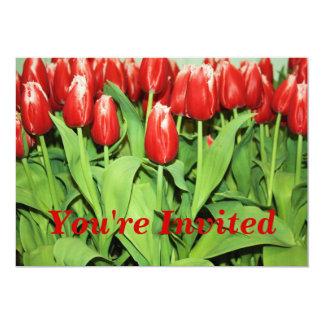 Convite vermelho das tulipas