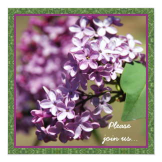 Convites de festas de florescência dos Lilacs