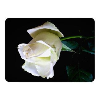 Convites de HAMbyWG/envelopes - rosa branco