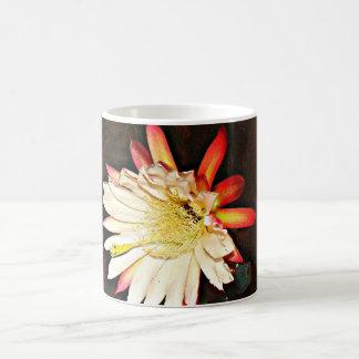Copo de café branco e cor-de-rosa da flor do cacto caneca de café