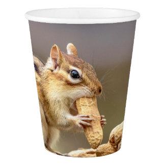 Copo De Papel Chipmunk que come um amendoim