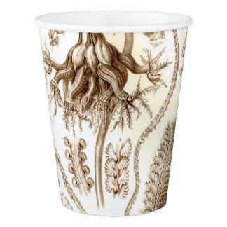 Copo De Papel Coral de Ernst Haeckel Pennatulida