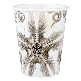Copo De Papel Estrelas frágeis de Ernst Haeckel Ophiodea