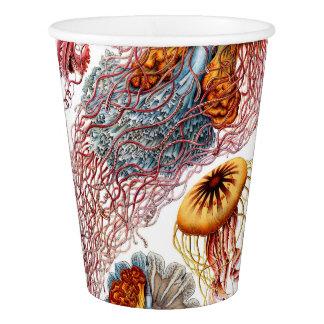 Copo De Papel Medusa de Ernst Haeckel Discomedusae