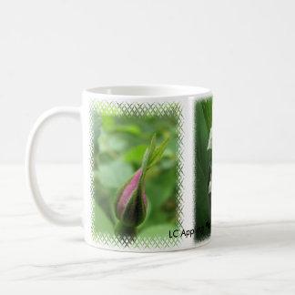 Cor-de-rosa botânico & lírio da caneca do vale