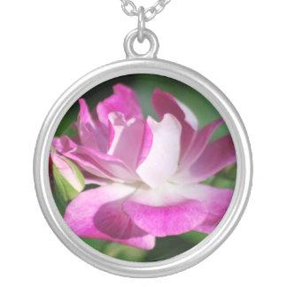 Cor-de-rosa cor-de-rosa de roda e significado colar com pendente redondo