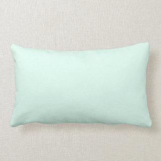 Cor verde da hortelã clara contínua feita sob almofada lombar