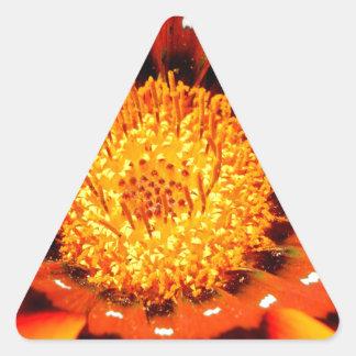 Coração de Gold.jpg Adesivo Triangular