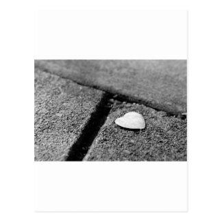 Coração de prata no passeio cartão postal