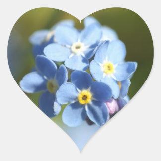 Coração dos miosótis adesivo de coração