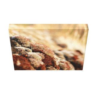 Coral seco impressão em tela