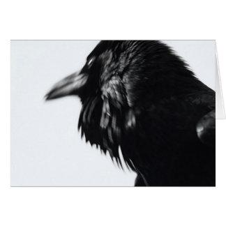 Corax do Corvus (corvo comum) Cartão Comemorativo