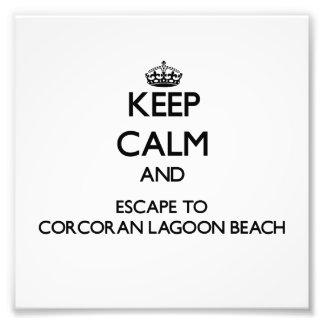 CORCORAN-LAGOON-BEAC1366161 png Foto Artes