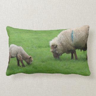 Cordeiro e carneiros do primavera almofada lombar