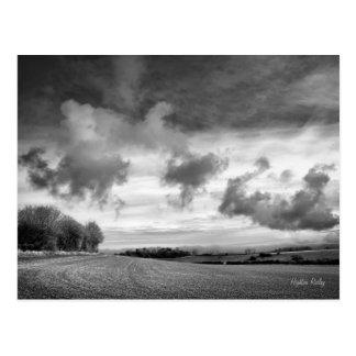 Cordeiros do céu, cartão de Wiltshire