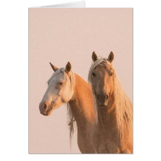 Corona & Cheyenne no cartão do cavalo selvagem do