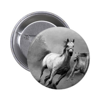 Corredor do cavalo boton