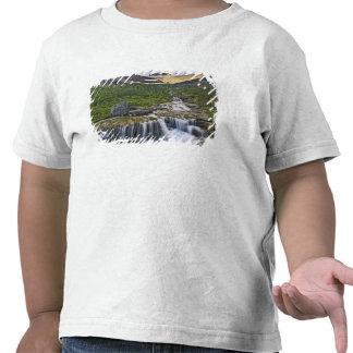 Córrego de conexão em cascata, parque nacional de tshirt
