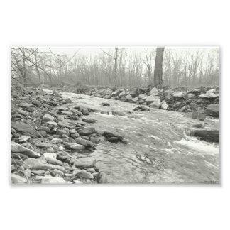 Córrego de fluxo da fotografia preto e branco