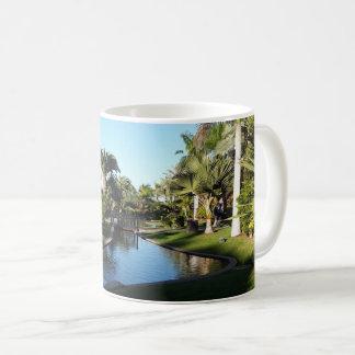 Córrego de Tenerife com caneca das palmeiras
