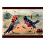 Corte dos pássaros cartão postal