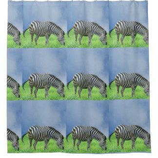 Cortina de chá da zebra cortina para box