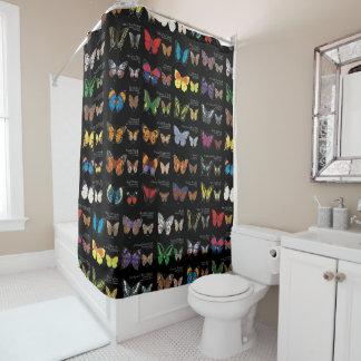 Cortina Para Box 30 espécies da borboleta de todo o mundo