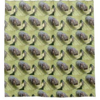 Cortina Para Box Cortina de chá do tempo do banho do hipopótamo
