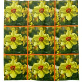 Cortina Para Box Daffodils amarelos alaranjado 02.2.3o