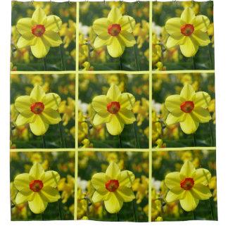 Cortina Para Box Daffodils amarelos alaranjado 02.2y