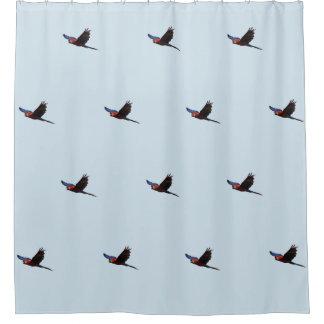 Cortina Para Box Escarlate do Macaw