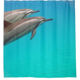 Cortina Para Box Golfinhos de Havaí