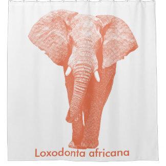 Cortina Para Box Passeio do elefante africano: Sienna queimado