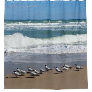 Cortina Para Box Rebanho de pássaros da praia