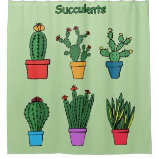 Cortina Para Box Succulents #1
