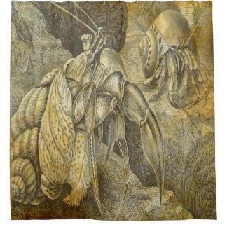 Cortina Para Chuveiro caranguejos de eremita