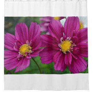 Cortina Para Chuveiro Flores roxas do zinnia
